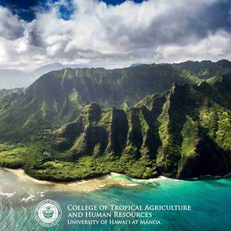 Article-in-the-University-of-Hawaii-College-of-Tropical-Agriculture-and-Human-Resources-News Jinan Banna