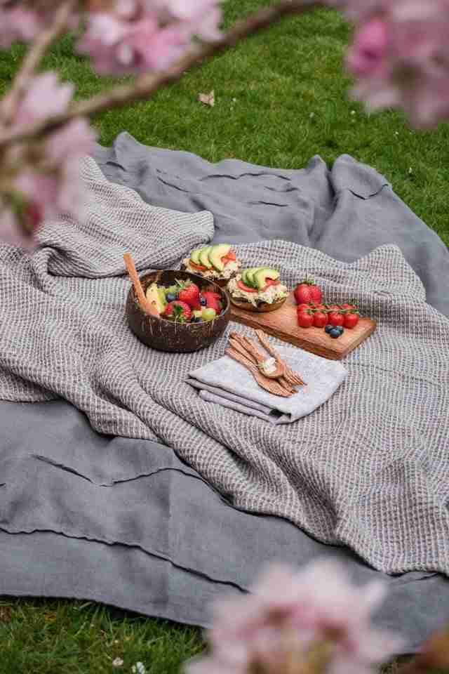 Healthy And Delicious Plant-Based Picnic Ideas